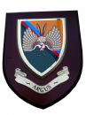 Argus 14 Intelligence Corps Regimental Wall Plaque
